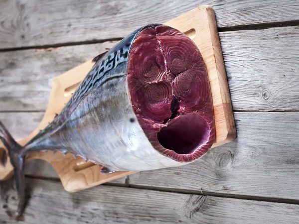 Fresh raw tuna tail on wooden board. Selective focus.